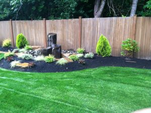 lawn-care-seattle (3)