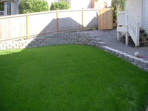 lawn-care-seattle (4)