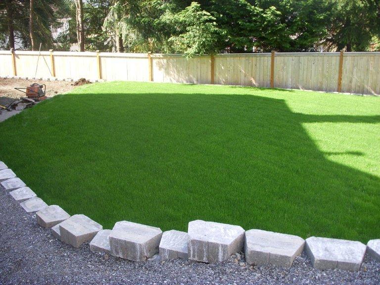 lawn-care-seattle (6)
