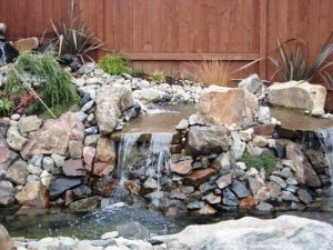 features water.70142703 std