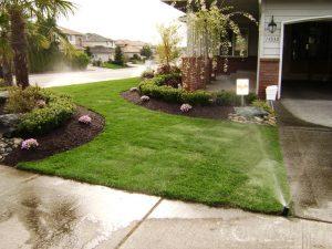 lawn-sprinklers